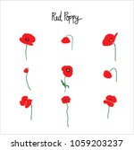 red poppy flowers clipart with... | Shutterstock .eps vector #1059203237
