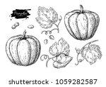 pumpkin vector drawing set....   Shutterstock .eps vector #1059282587