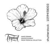 hibiscus. tropical flower...   Shutterstock .eps vector #1059458003