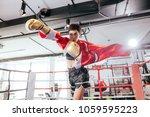 muay thai boxer hitting... | Shutterstock . vector #1059595223