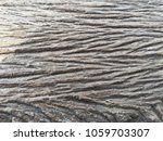 selected focus. close up of...   Shutterstock . vector #1059703307