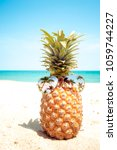 hipster pineapple with... | Shutterstock . vector #1059744227