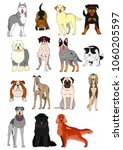 group of large and middle dogs... | Shutterstock .eps vector #1060205597