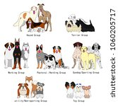 dogs group of breeds | Shutterstock .eps vector #1060205717