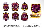 a set of colorful logos  badges ... | Shutterstock .eps vector #1060295243