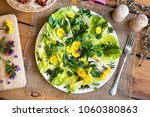 salad with coltsfoot  chickweed ... | Shutterstock . vector #1060380863