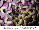 artichoke photo macro  | Shutterstock . vector #1060679177