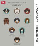 dogs by country of origin.... | Shutterstock .eps vector #1060690247