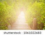 Wooden Walkway  Bridge To...