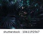 dark blue exotic fantastic...   Shutterstock . vector #1061192567