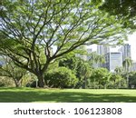 Brisbane park landscape - stock photo