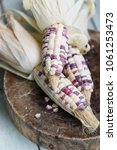 Small photo of Corn On Cob. Colored Thai Corn On Cob