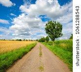 agricultural landscape in...   Shutterstock . vector #1061288543