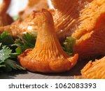 raw wild chanterelle mushrooms...   Shutterstock . vector #1062083393
