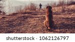 abandoned brown dog sitting... | Shutterstock . vector #1062126797