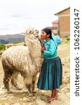 """Small photo of Sun Island, Bolivia - February 2018: a young girl kissing her alpaca in the streets of the Isla del Sol (""""Sun Island"""") in Bolivia"""