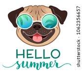 pug dog wearing mirror... | Shutterstock .eps vector #1062356657