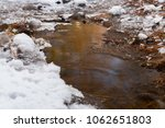 Small photo of Water accumulation in the forest