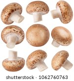 isolated mushrooms. collection... | Shutterstock . vector #1062760763