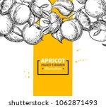 apricot vintage branch border.  ... | Shutterstock .eps vector #1062871493