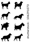 set of vector silhouettes dogs... | Shutterstock .eps vector #106291073