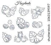 sketch hazel nut set. isolated... | Shutterstock .eps vector #1063139597