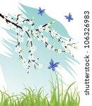 cherry blossom   vector   Shutterstock .eps vector #106326983