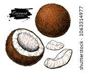 vector hand drawn coconut set.... | Shutterstock .eps vector #1063314977