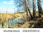 Small photo of Belarus, Polesie. Belarusian spring landscape. Spring landscape with birches and meliorative canal in spring after melting snow.