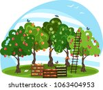 harvesting in the orchard | Shutterstock .eps vector #1063404953