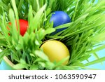 colorful easter eggs in the... | Shutterstock . vector #1063590947