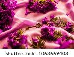 gold key. old vintage key. pink ...   Shutterstock . vector #1063669403