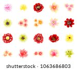 collection of floral elements | Shutterstock .eps vector #1063686803