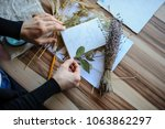 top view of botanist workplace  ... | Shutterstock . vector #1063862297