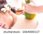 expert or professional of...   Shutterstock . vector #1064000117