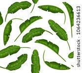 set of tropical leaves. banana... | Shutterstock .eps vector #1064236613