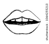 female lips sensuality icon | Shutterstock .eps vector #1064255213