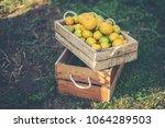 orange box on wooden table   Shutterstock . vector #1064289503