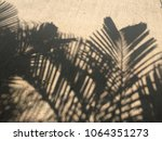 shadow of palm leaves on... | Shutterstock . vector #1064351273