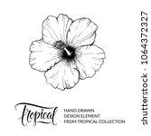 hibiscus. tropical flower... | Shutterstock .eps vector #1064372327