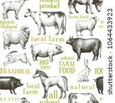 vector farm animals background. ... | Shutterstock .eps vector #1064433923