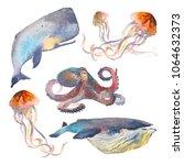 watercolor sea animals set.... | Shutterstock . vector #1064632373