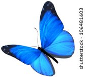 3d butterfly. isolated on white ... | Shutterstock . vector #106481603