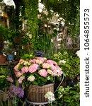 beautiful flowers at a florist | Shutterstock . vector #1064855573