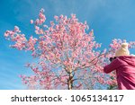 tourist traveler take photos by ... | Shutterstock . vector #1065134117