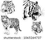 vector drawings sketches... | Shutterstock .eps vector #1065264737
