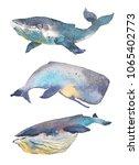 whales set. sea animal.... | Shutterstock . vector #1065402773