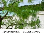 view on the tropical sandy... | Shutterstock . vector #1065532997
