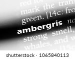 Small photo of ambergris word in a dictionary. ambergris concept.