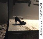 Lost Shoe Of Cinderella